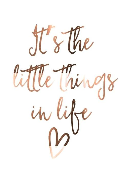 happy-quotes-about-life-also-happy-quote-about-life-best-happiness-quotes-on-57-plus-happy-love-life-quotes-images